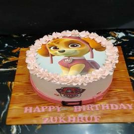 Paw Patrol Cake for girl