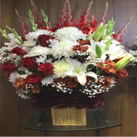 Red & White Bokeh